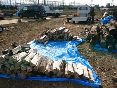 駒寺の薪畑で薪集め