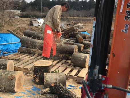 駒寺の薪畑