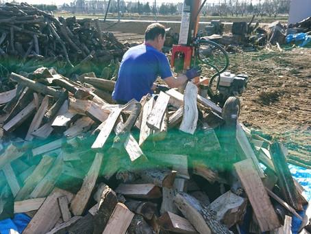 駒寺の薪畑 薪割り