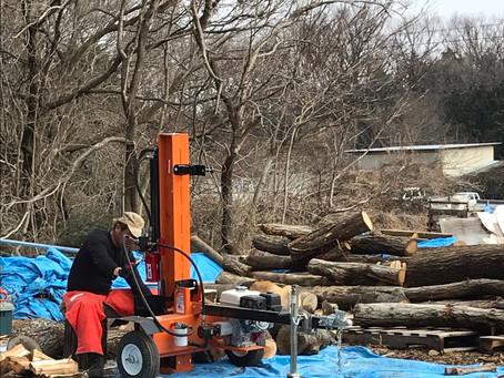 駒寺の薪畑で薪作り