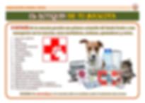CONSEJOS - El botiquin de tu mascota.png