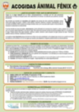 Info_Acogidas_ANIMALFENIX_junio´18_page-