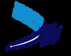 logo_DII.png
