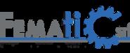 fematic logo.png
