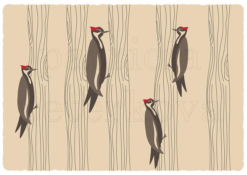 woodpecker-01.jpg
