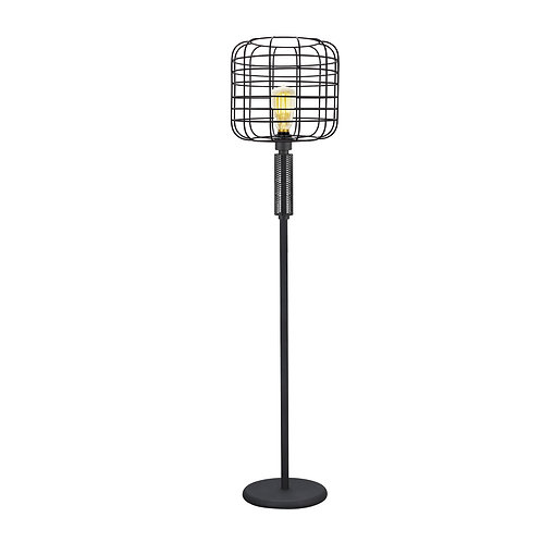 Modern Caged Shape Floor Lamp with Circular Base and Mesh Pattern, Black