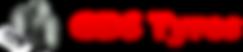 GDS logo 2020.png