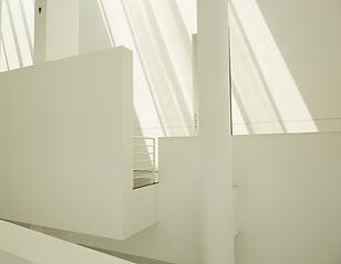 white9.jpg