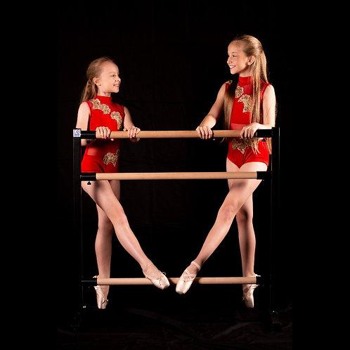 Triple Ballet barre