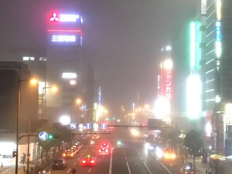 え!霧すごい!