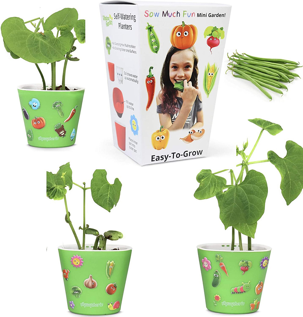 seed starting kit, plants, gifts for kids