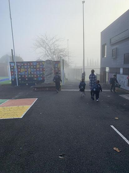 buddy bench fog.jpg