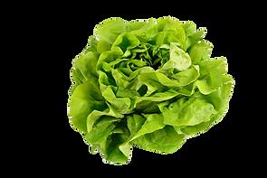 salad-2114149_1920_edited.png