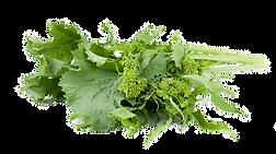 broccoli_edited.png
