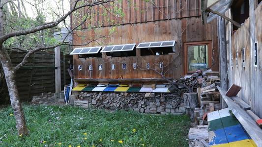 Thomas's beehives
