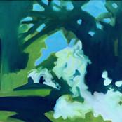 Isolation walk - hawthorn & cow parsley