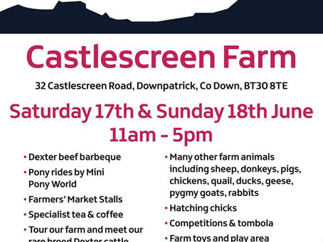 Open Farm Weekend - Meet our Dexters and more