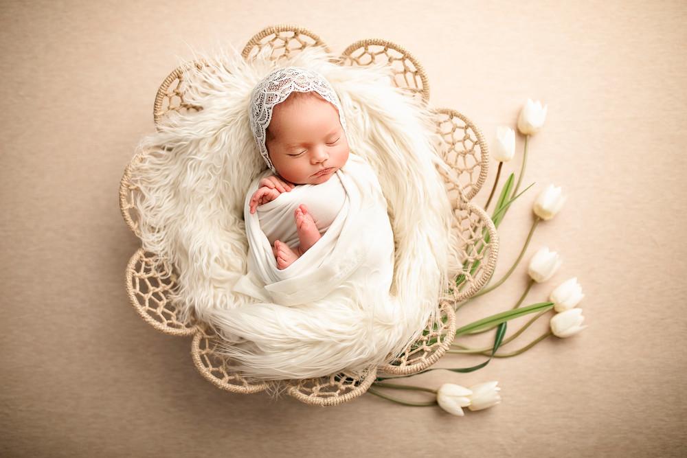 Fotografia newborn recien nacidos bebes