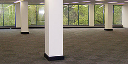Commercial Carpet Cleaning DFW