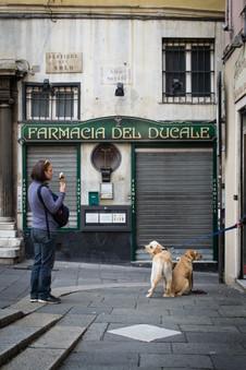 Farmacia del Ducale