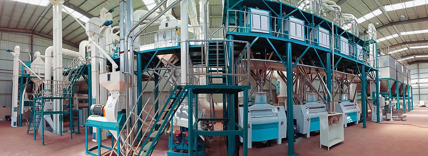 100t maize flour milling machine.jpg
