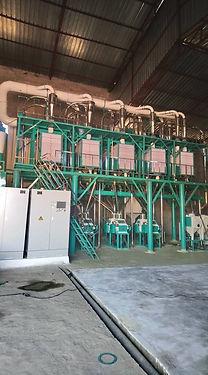 42T wheat flour milling.jpg