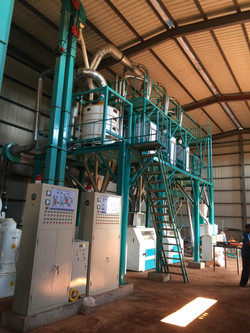50T maize milling machines