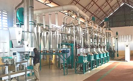 50t maize milling line standard.png
