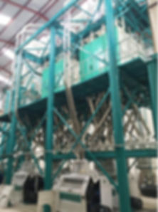150t maize milling line from hdf.jpg