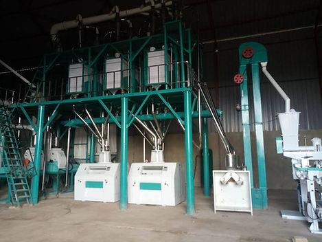 50T european standard maize milling line