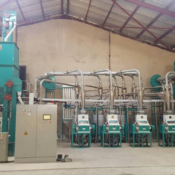 30t maize milling line.JPG