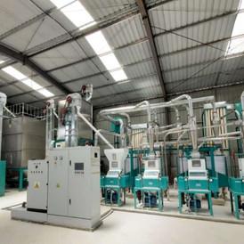 30t maize milling line from hongdefa mac