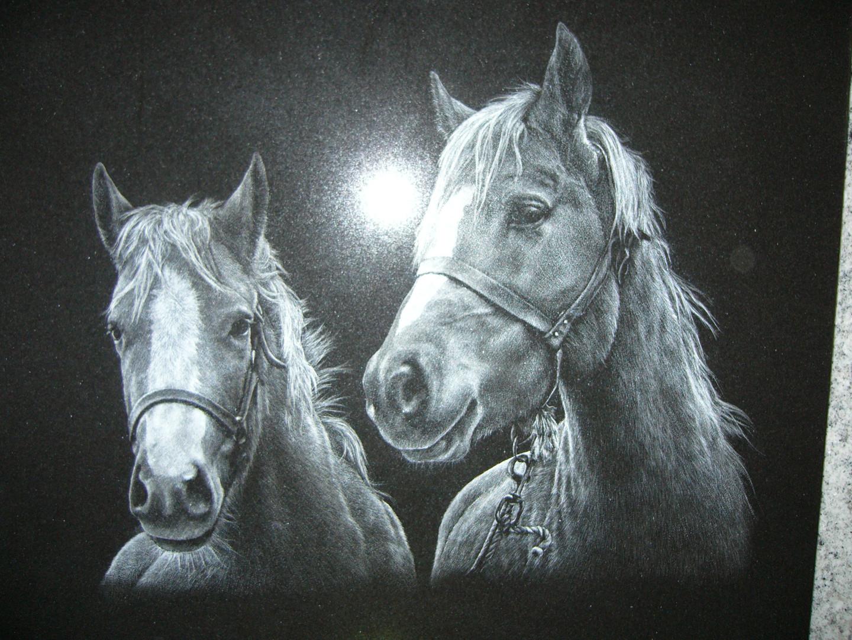 steenklip paard4.JPG