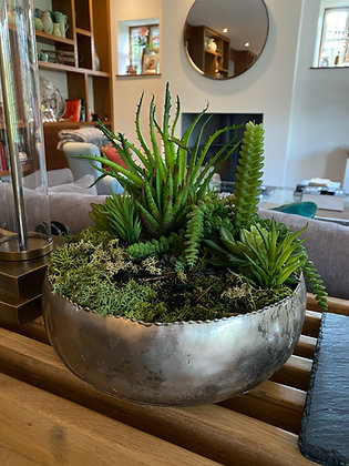 Succulents-01