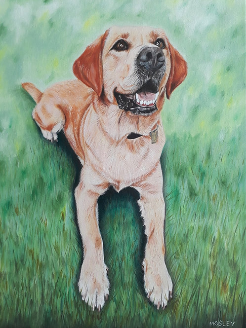 Labrador painting A4 print