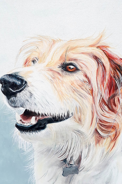 Brown & White dog painting A3 print