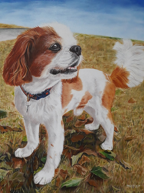 Spaniel in the Park painting A3 print