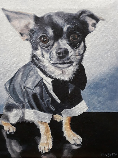Chihuahua in a Tux painting A4 print
