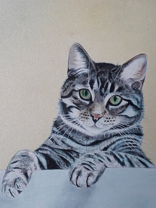 Tabby Cat painting A3 print