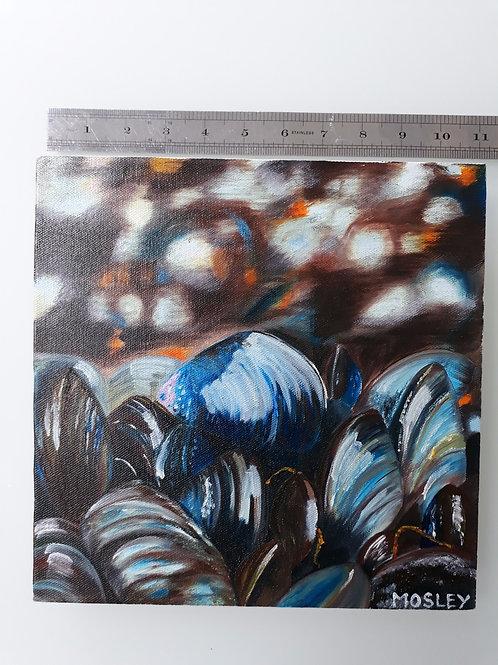 Shiny Blue Mussel Shells