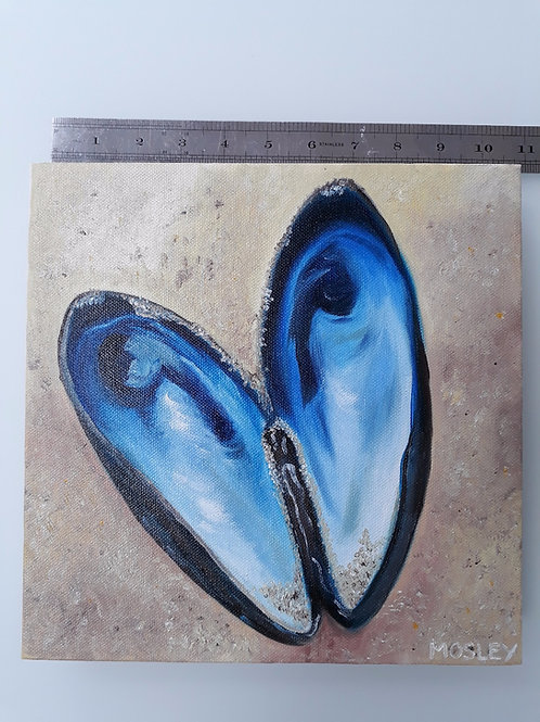 Sandy Blue Mussel Shell