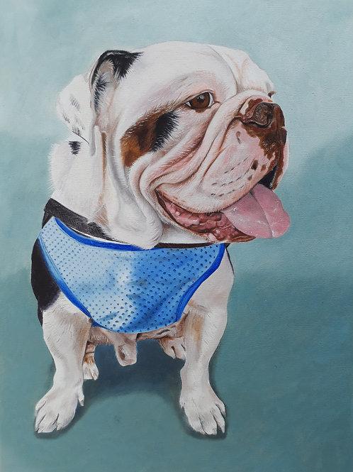 Bulldog painting A3 print