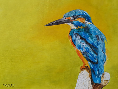 Kingfisher painting A4 print
