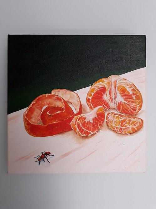 Satsuma with Ant