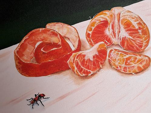 Peeled Satsuma painting A4 print