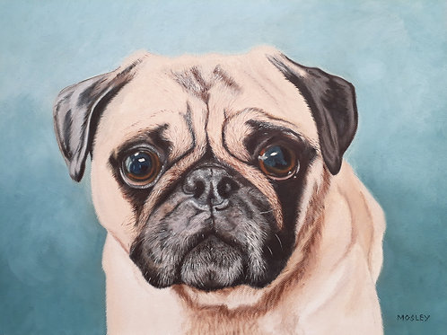 Pug painting A3 print