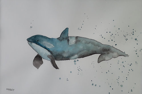 Orca Whale painting A4 print