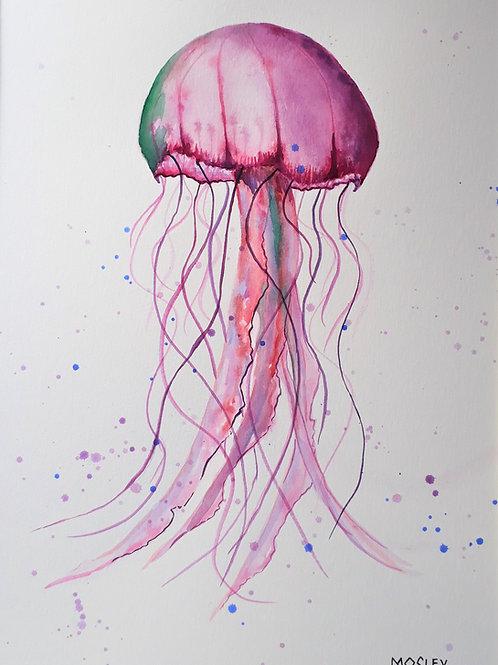 Pink Jellyfish A4 Print