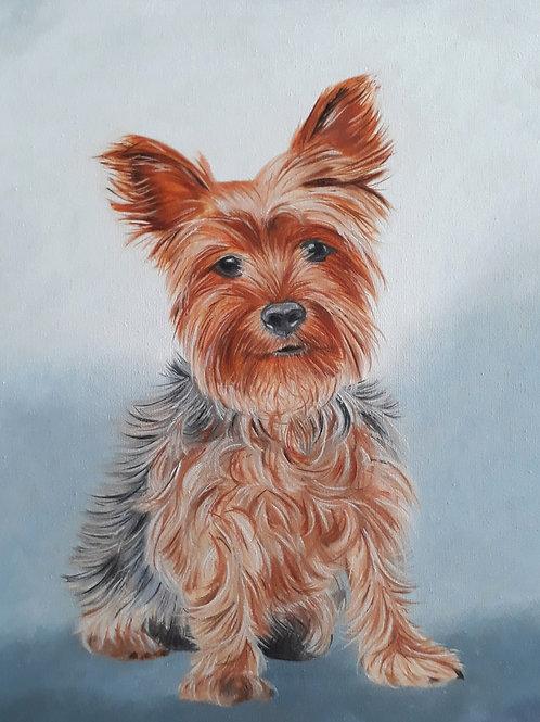 Yorkie Dog painting A4 print