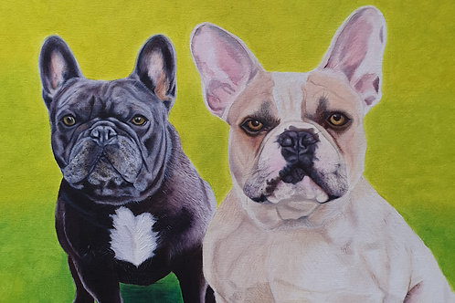 Two French Bulldogs painting A4 print
